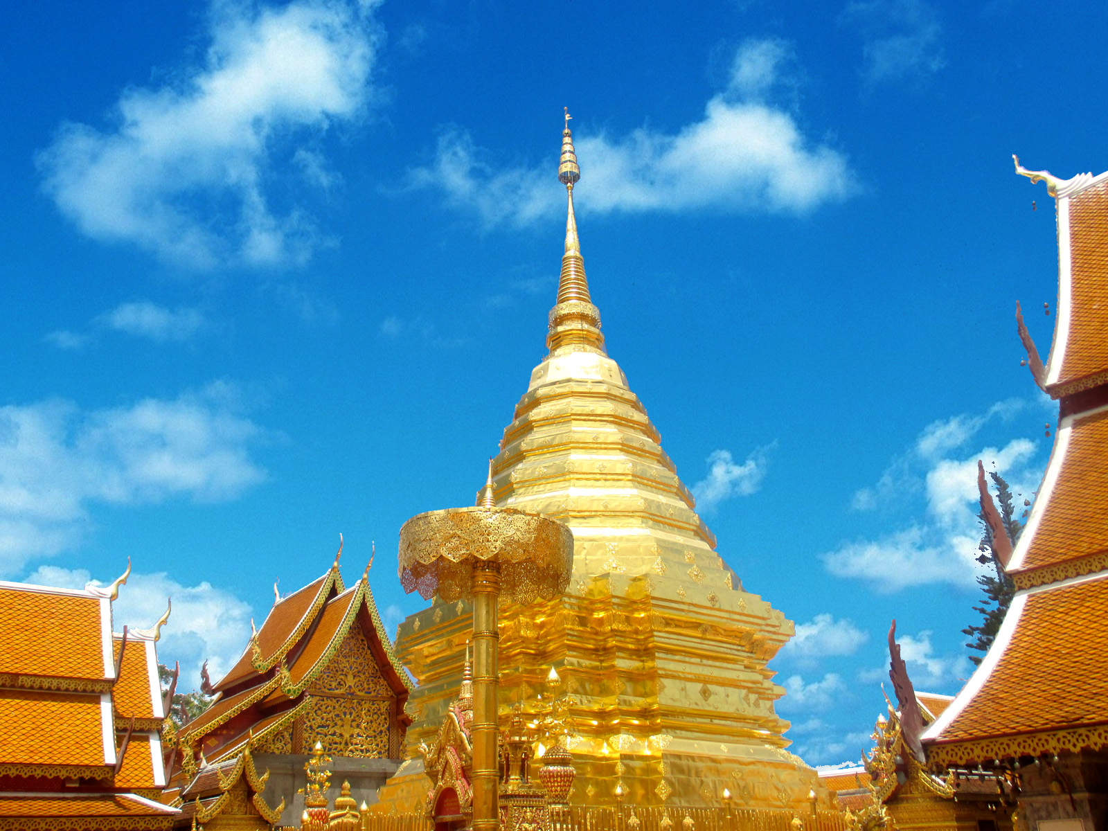 Sightseeing Tours - Doi Suthep | Chiang Mai Trekking | The best trekking in Chiang Mai with Piroon Nantaya