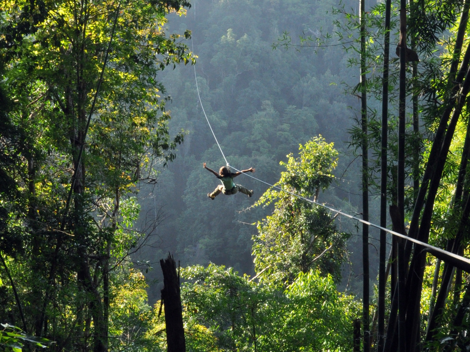 Flight Of The Gibbon | Chiang Mai Trekking | The best trekking in Chiang Mai with Piroon Nantaya