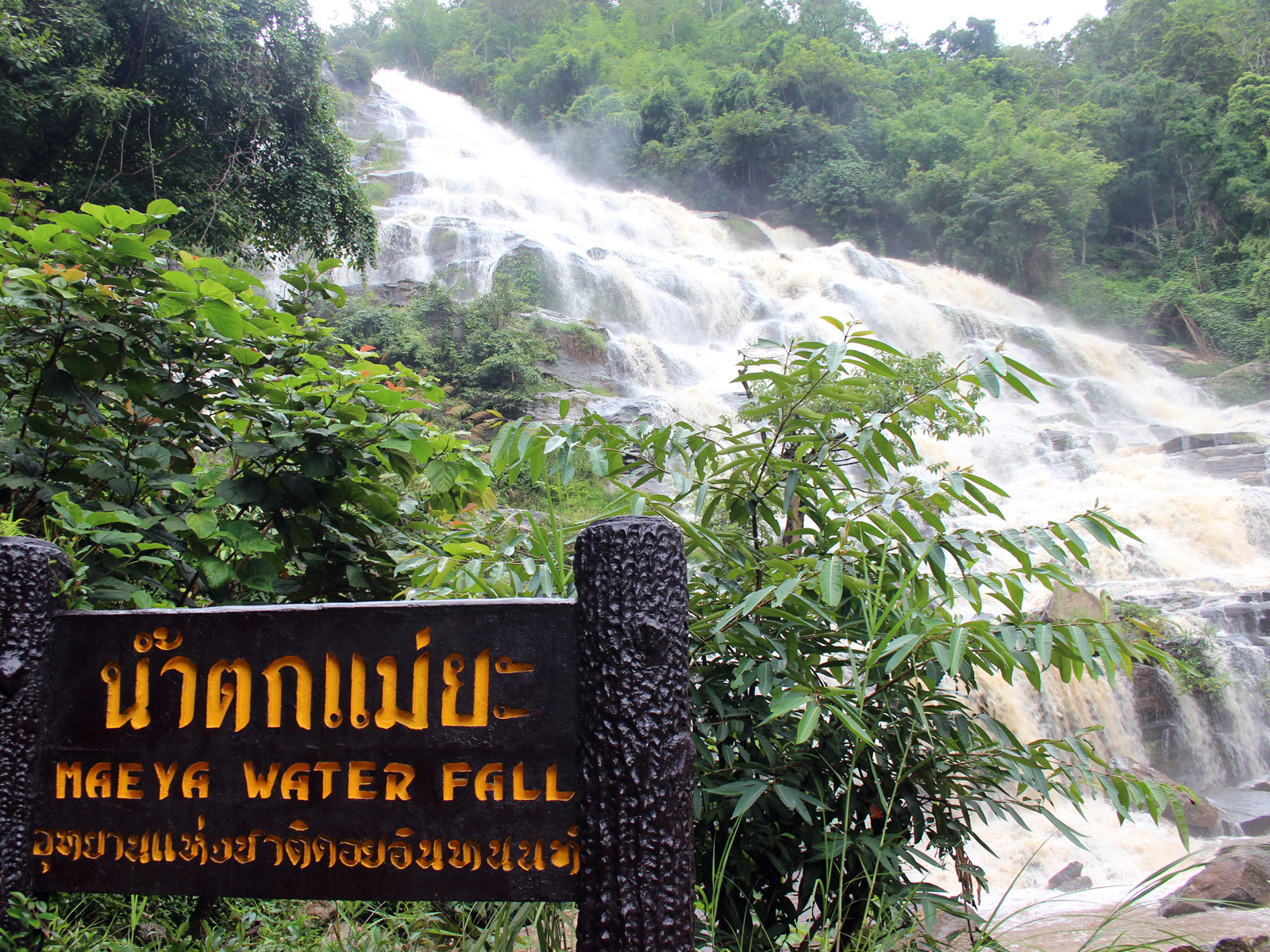 Sightseeing Tours - Doi Inthanon | Chiang Mai Trekking | The best trekking in Chiang Mai with Piroon Nantaya