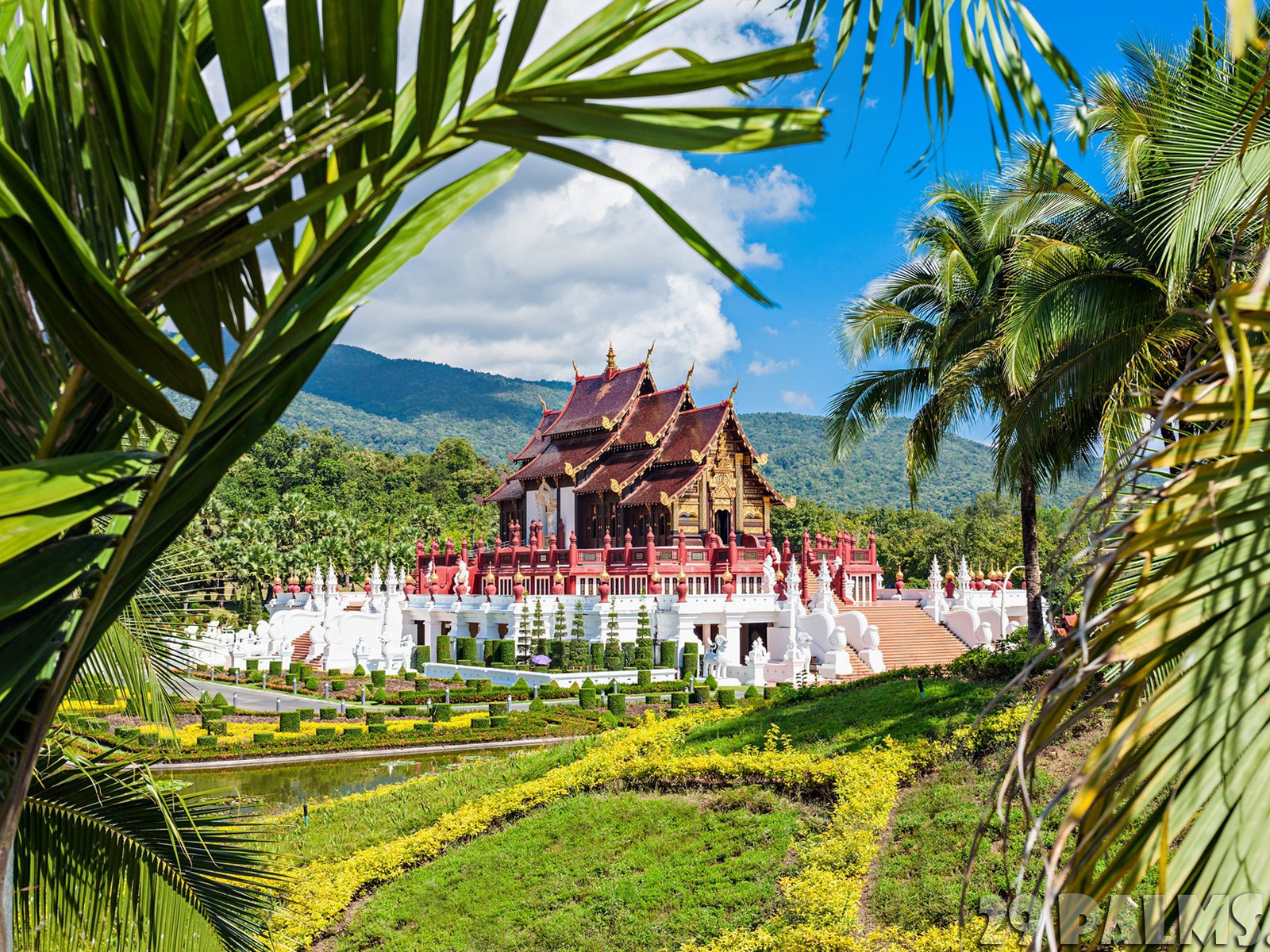 Sightseeing Tours - Royal Flora Ratchaphruek | Chiang Mai Trekking | The best trekking in Chiang Mai with Piroon Nantaya