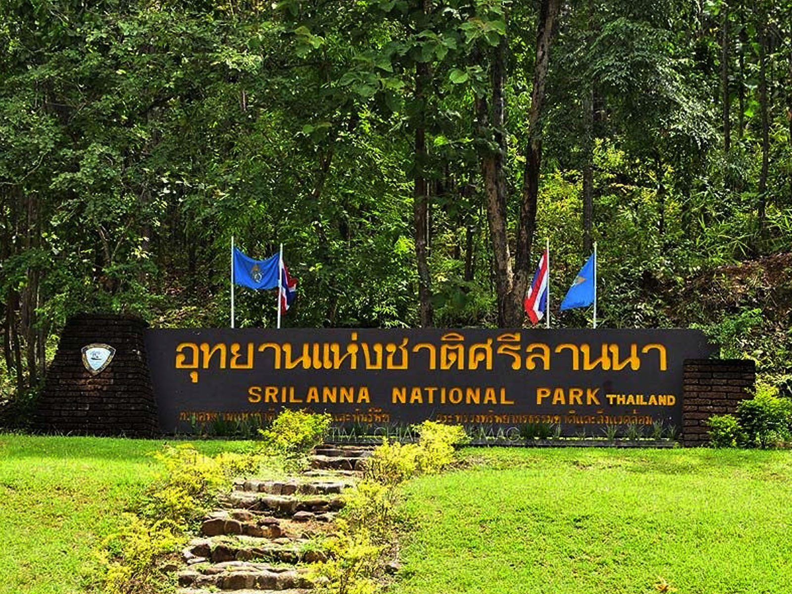 Sri Lanna National Park | Chiang Mai Trekking | The best trekking in Chiang Mai with Piroon Nantaya