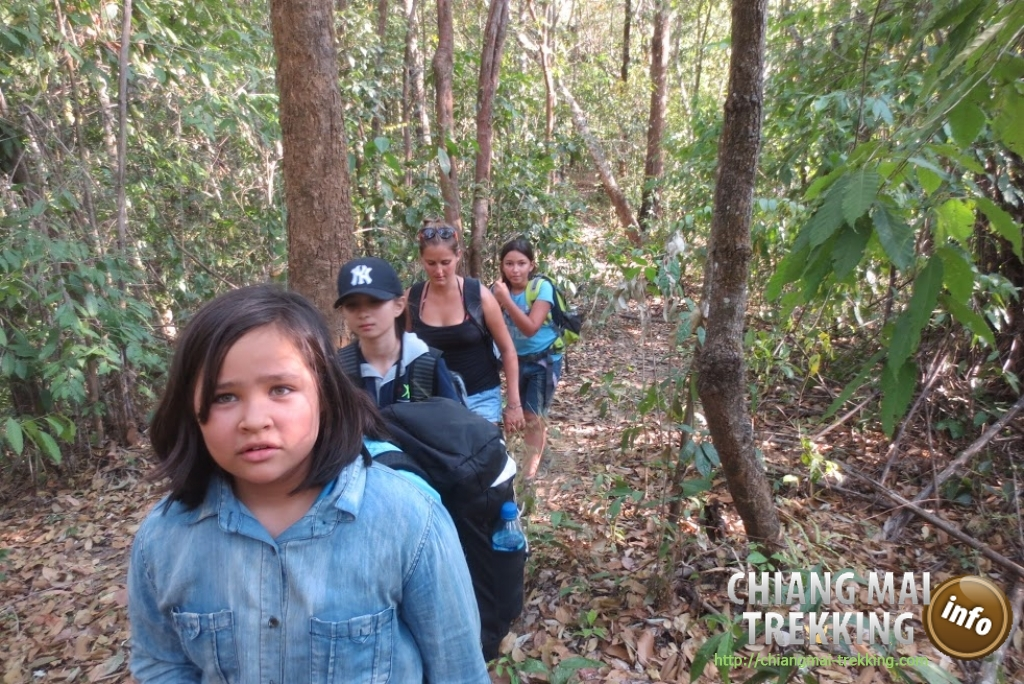 4-days/3-nights Trekking Tour | Chiang Mai Trekking | The best trekking in Chiang Mai with Piroon Nantaya