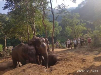 University of Maryland College Park 53 pax | Chiang Mai Trekking | The best trekking in Chiang Mai with Piroon Nantaya