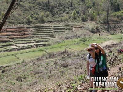 3-days/2-nights Trekking Tour | Chiang Mai Trekking | The best trekking in Chiang Mai with Piroon Nantaya